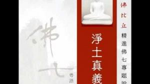 淨土真義 第四集 (華語)